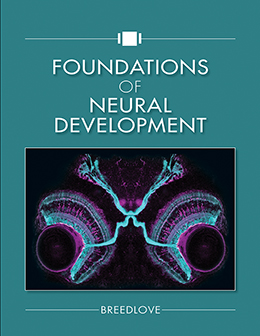Foundations of Neural Development, Instructor Resources