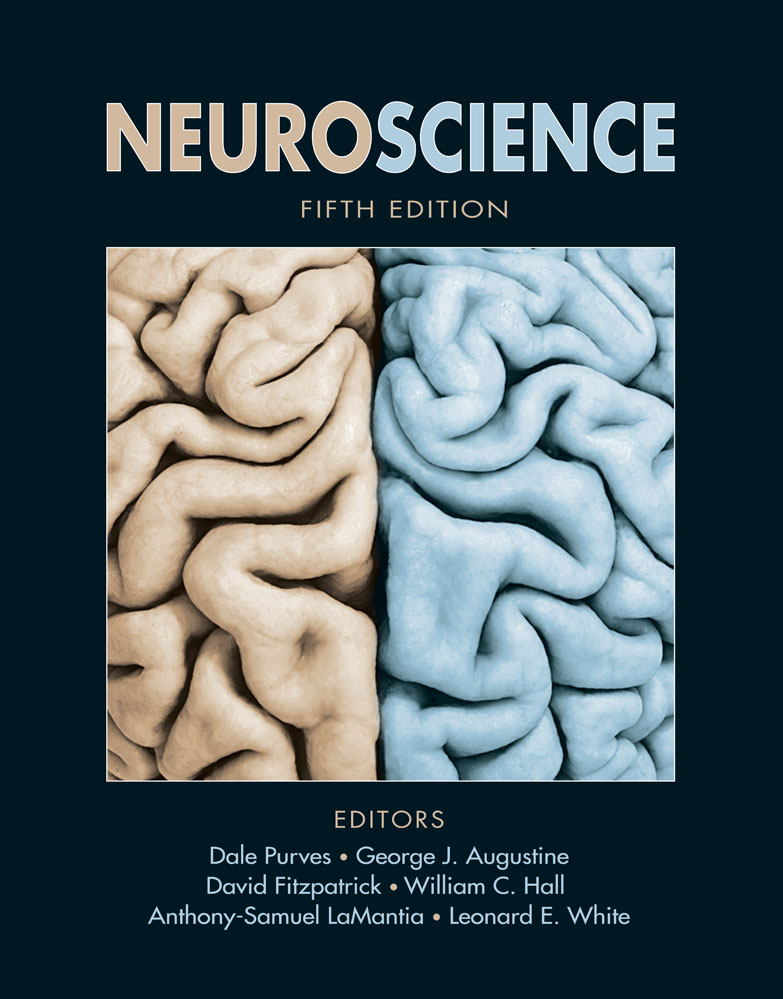 Purves, Neuroscience, Fifth Edition