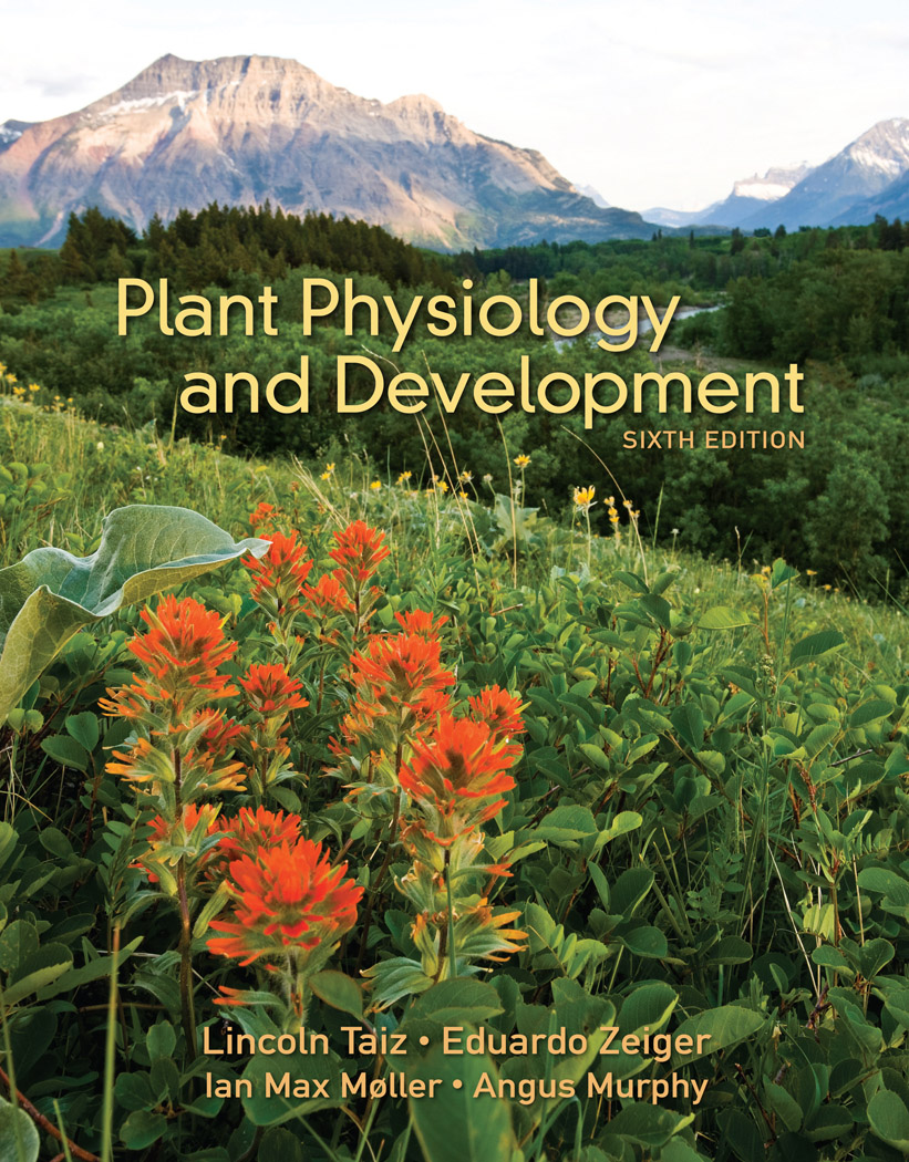 Plant Physiology and Development, 6e - Instructor Resources