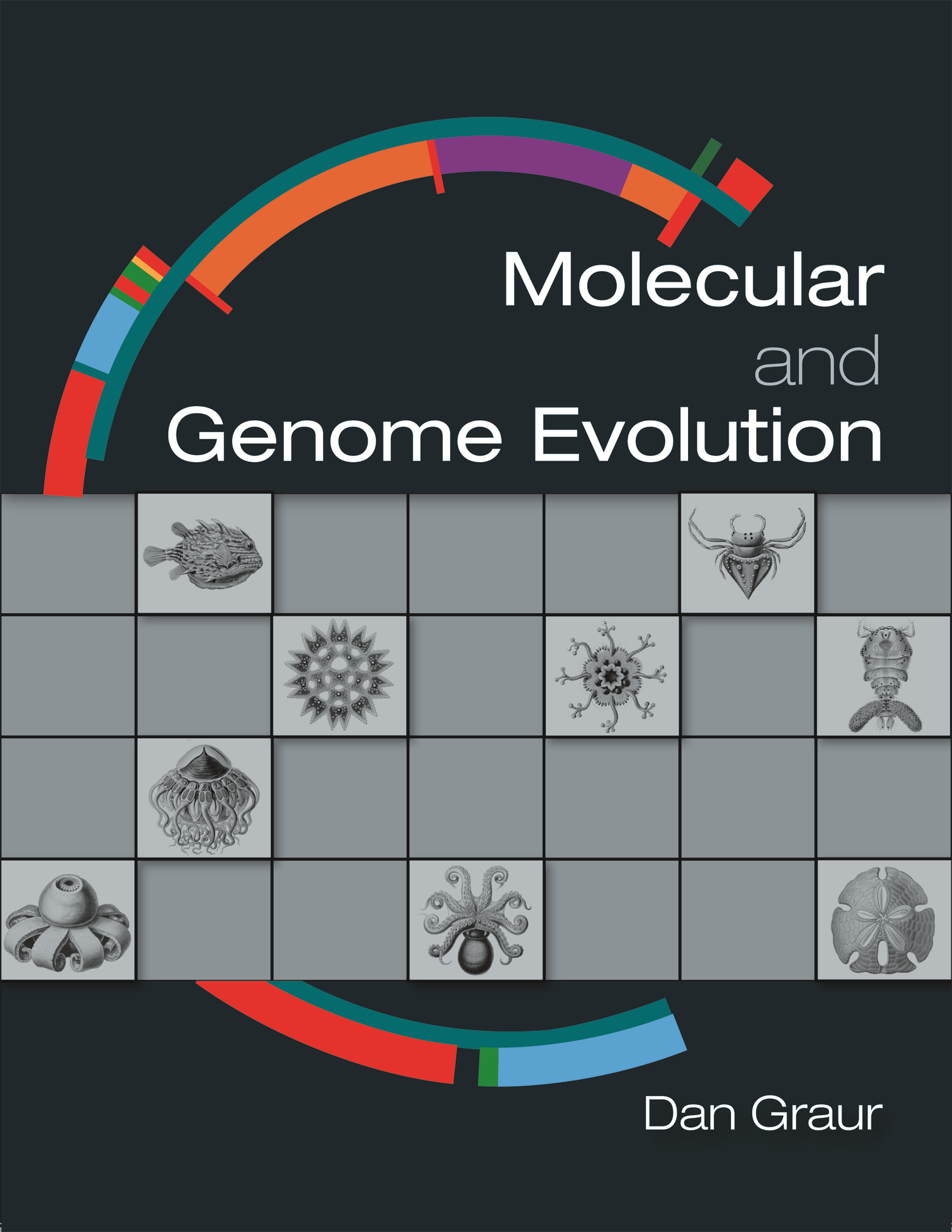 Molecular and Genome Evolution Instructor Resources