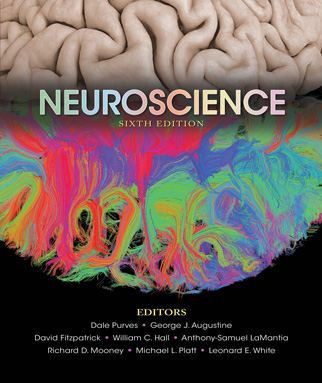 Neuroscience, Sixth Edition Instructor Resources