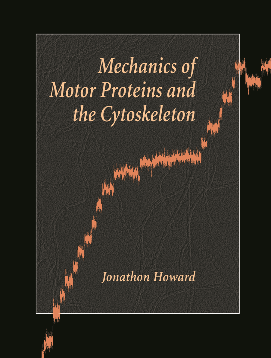 Mechanics of Motor Proteins and the Cytoskeleton Instructor Resources