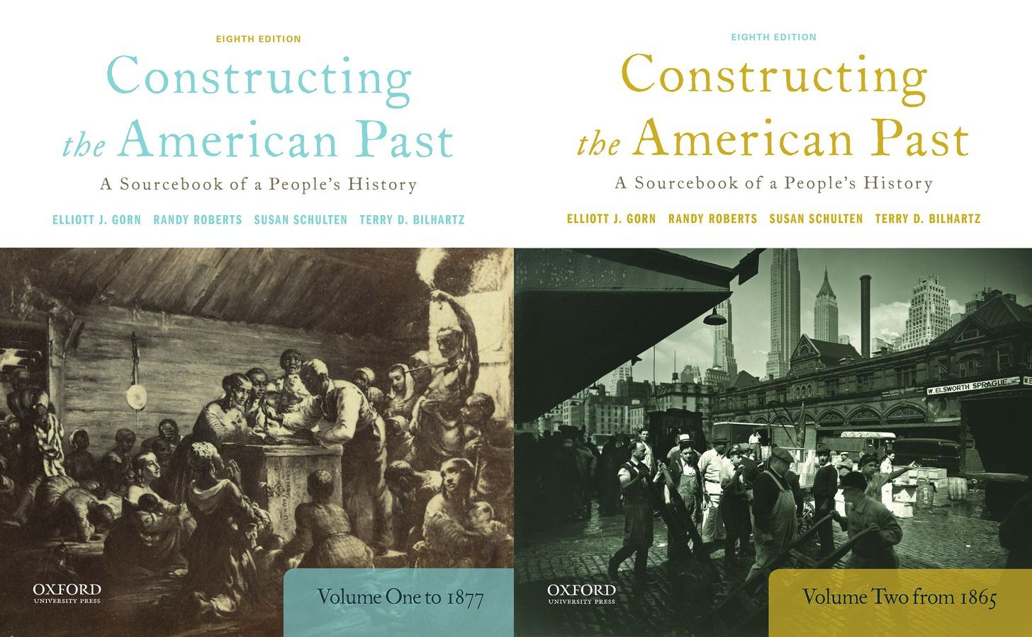Constructing the American Past: A Sourcebook of a People's History 8e