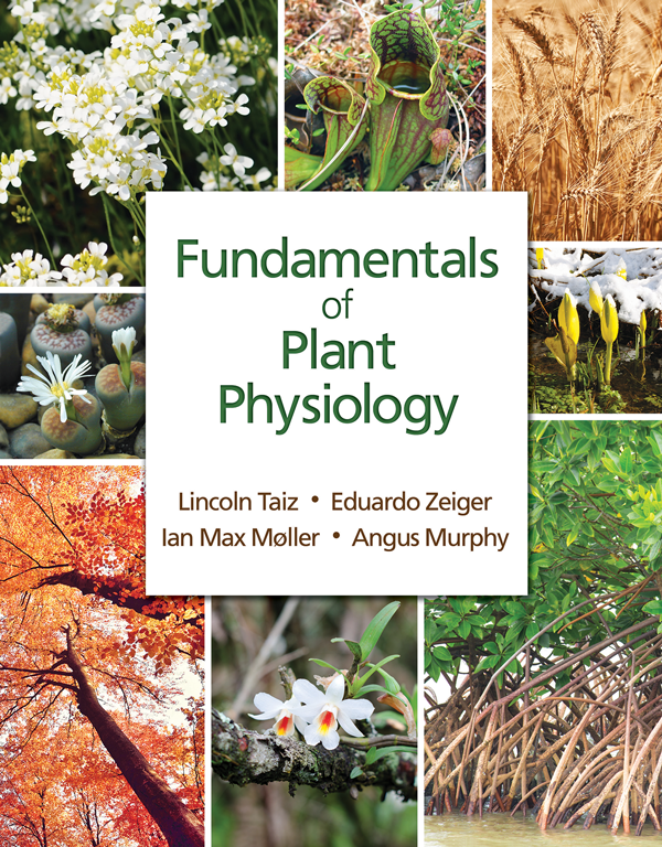 Fundamentals of Plant Physiology Instructor Resources