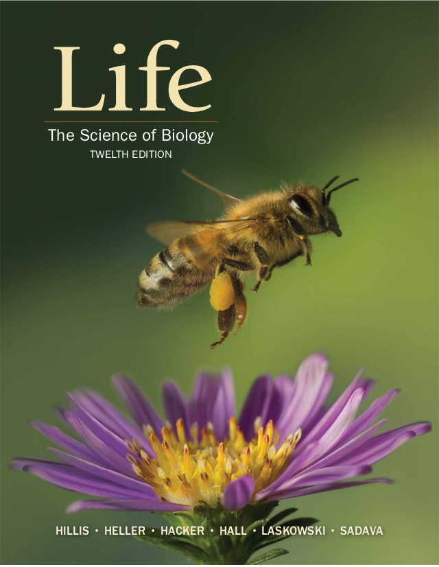 Life: The Science of Biology 12e Student Resources