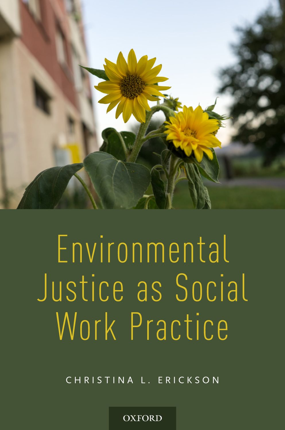 Environmental Justice as Social Work Practice Instructor Resources